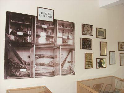 Перший зал в музеї Вікентія Хвойки у с. Халеп'я