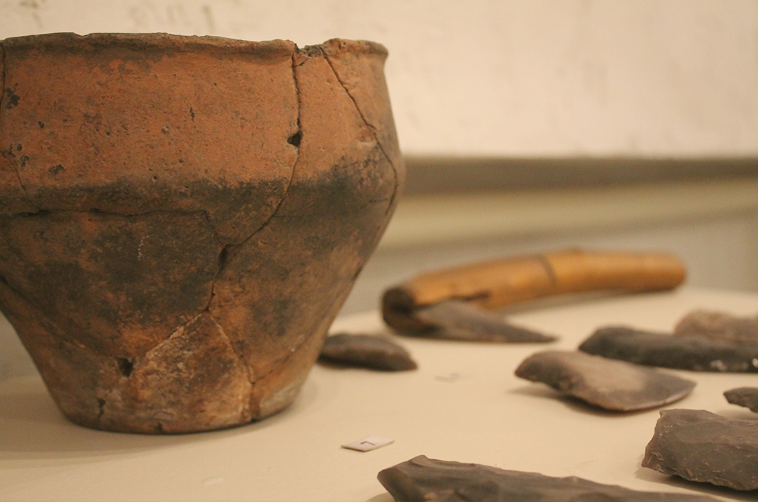 Кераміка та знаряддя праці з кременю східнотшинецької культури доба Бронзи