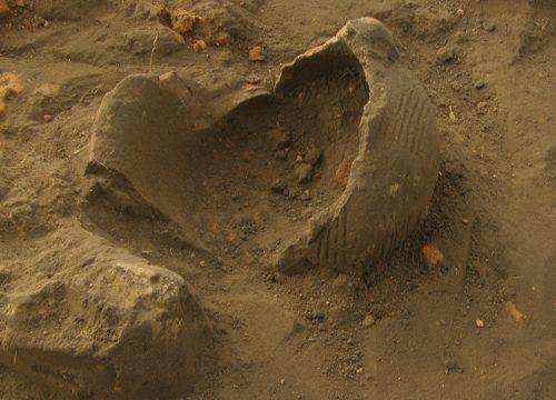 Коломийців Яр, розкопки 2006 року