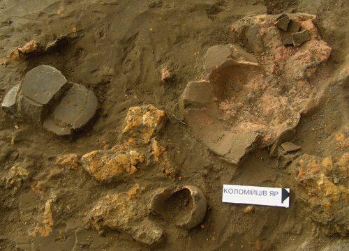 Коломийців Яр, розкопки 2006 року, фрагменти трипільського посуду