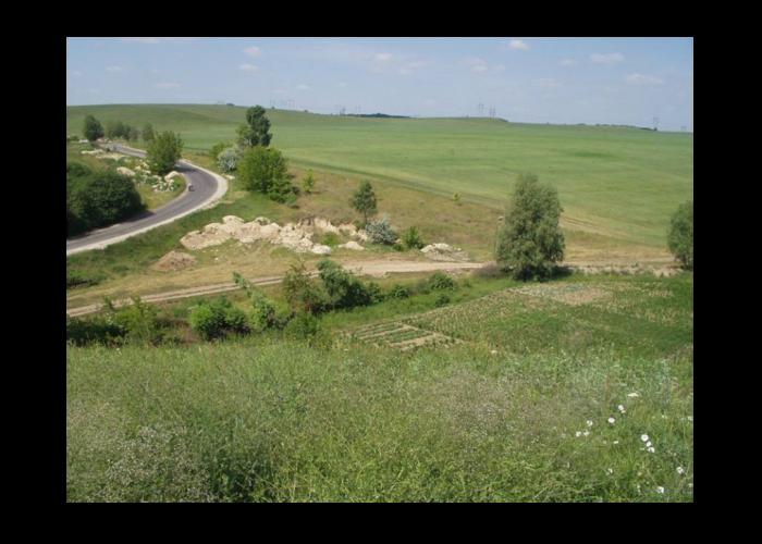 Вид на місце розташування поселення трипільської культури, с. Щербанівка, урочище Липове